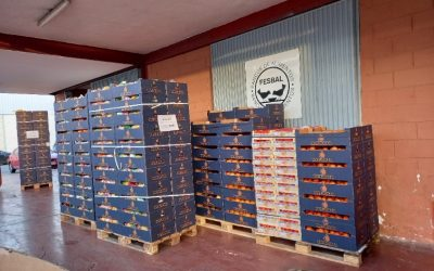 Eurogroup España dona fruta y verdura a los Bancos de Alimentos